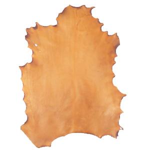 вид натуральной кожи пергамент